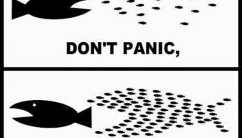 صدارت : نکاتی چند در مورد انتخابات امریکا، در آخرین دقایق آخرین روز قبل از انتخابات.