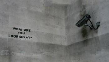 شورای حقوق بشر سازمان ملل بایستی برای حق حریم خصوصی در عصر ارتباطات مجازی گزارشگر ویژه منصوب کند